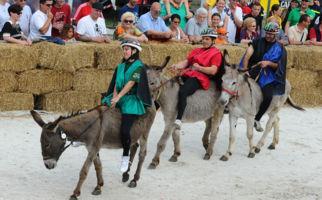 Das Eselrennen von Mendrisio