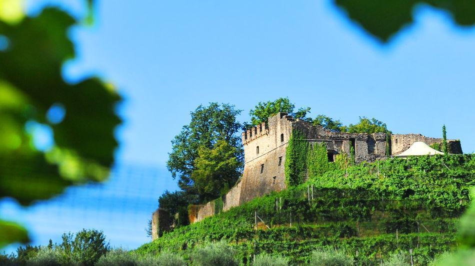 vico-morcote-tenuta-castello-di-morcot-1391-0.jpg
