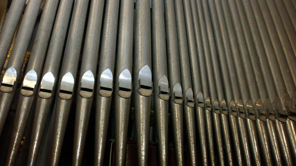 organo-1169-0.jpg
