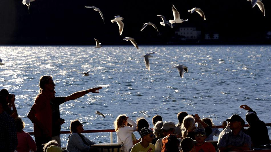 lago-ceresio-battello-gabbiani-7530-0.jpg