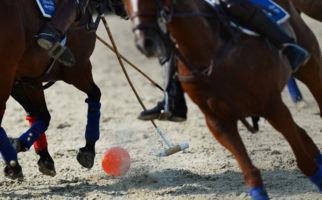 Zum Polo Cup nach Ascona