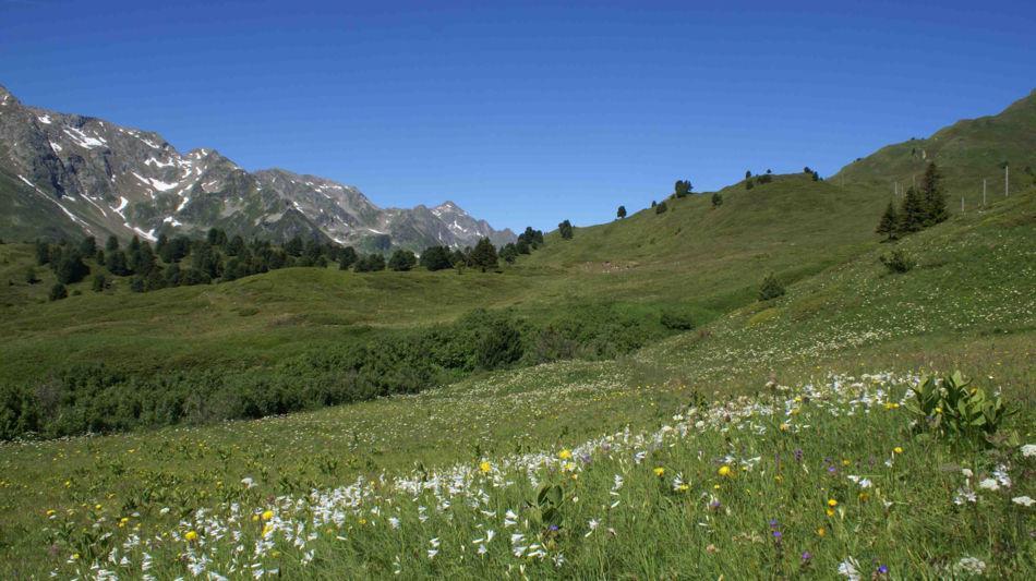 centro-pro-natura-lucomagno-7424-0.jpg