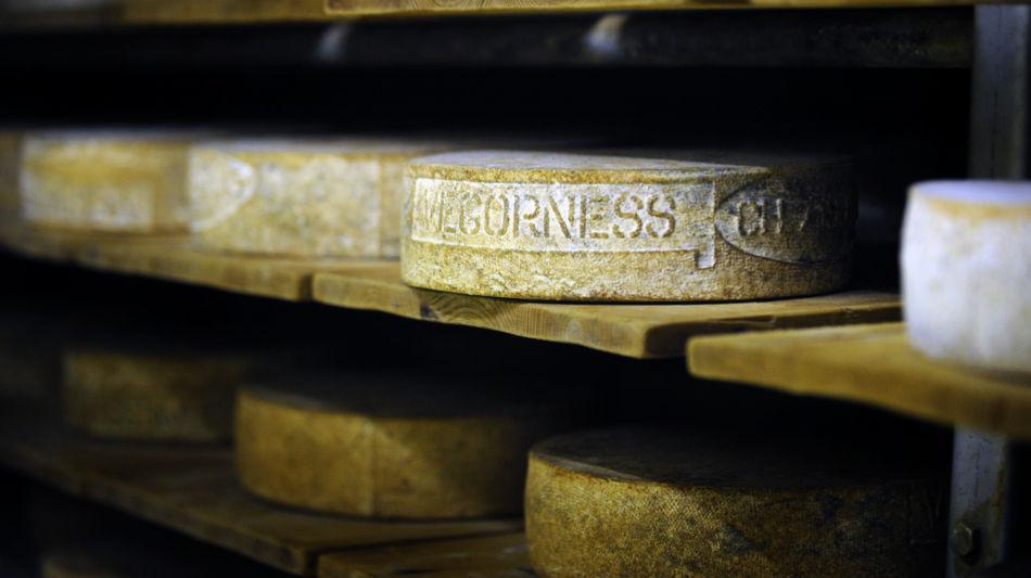 formaggio-dellalpe-vegorness-6891-0.jpg
