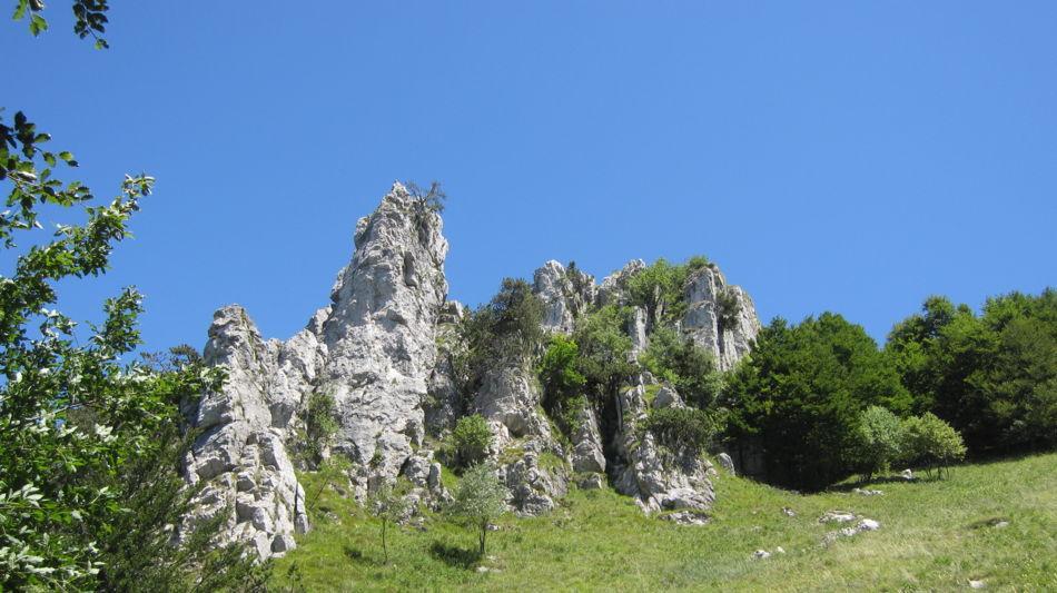 lugano-trekking-cime-denti-della-vecch-1217-1.jpg