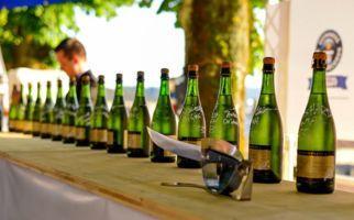 In die Weinkeller Mendrisios