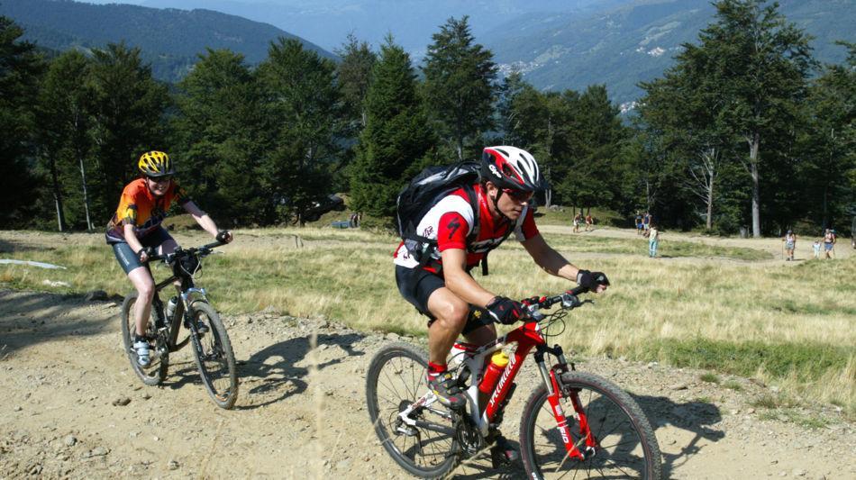 mountain-bike-7242-0.jpg