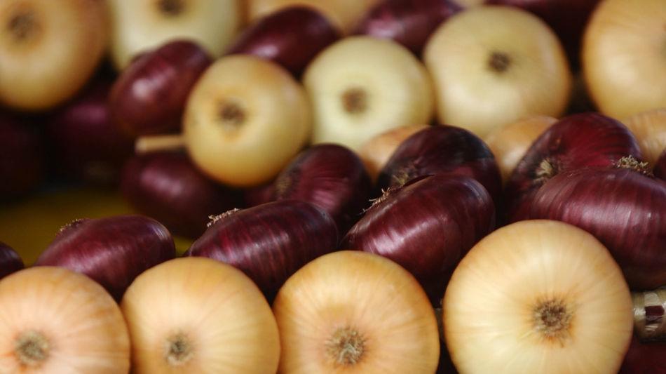 lugano-mercato-delle-cipolle-9262-0.jpg