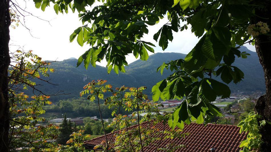 mendrisio-grotto-san-martino-1324-2.jpg