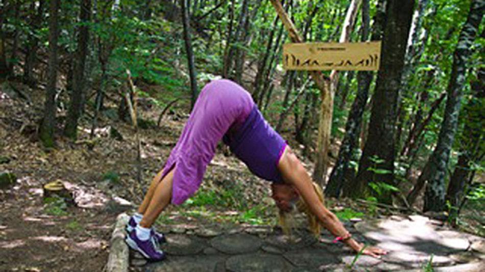 sentiero-dello-yoga-1326-0.jpg