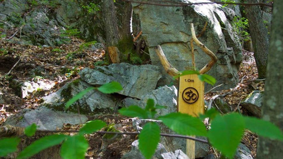 sentiero-dello-yoga-del-gambarogno-6668-0.jpg