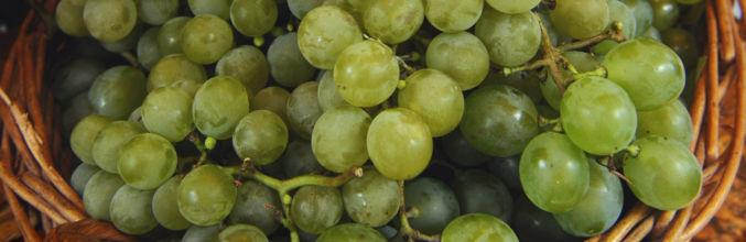 uva-bianca-1297-0.jpg