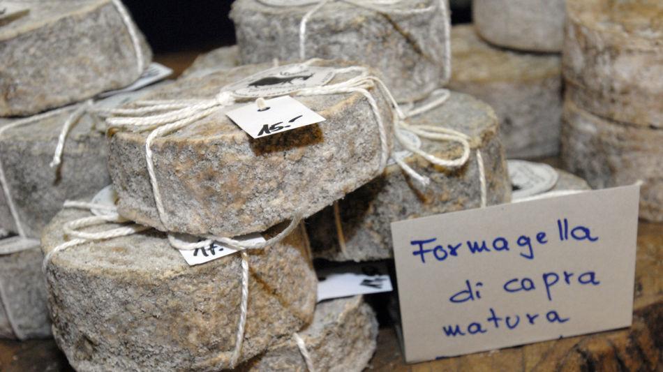 formaggio-di-capra-9401-0.jpg
