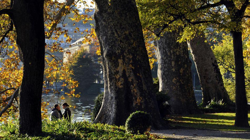 lugano-parco-ciani-quercie-1337-0.jpg