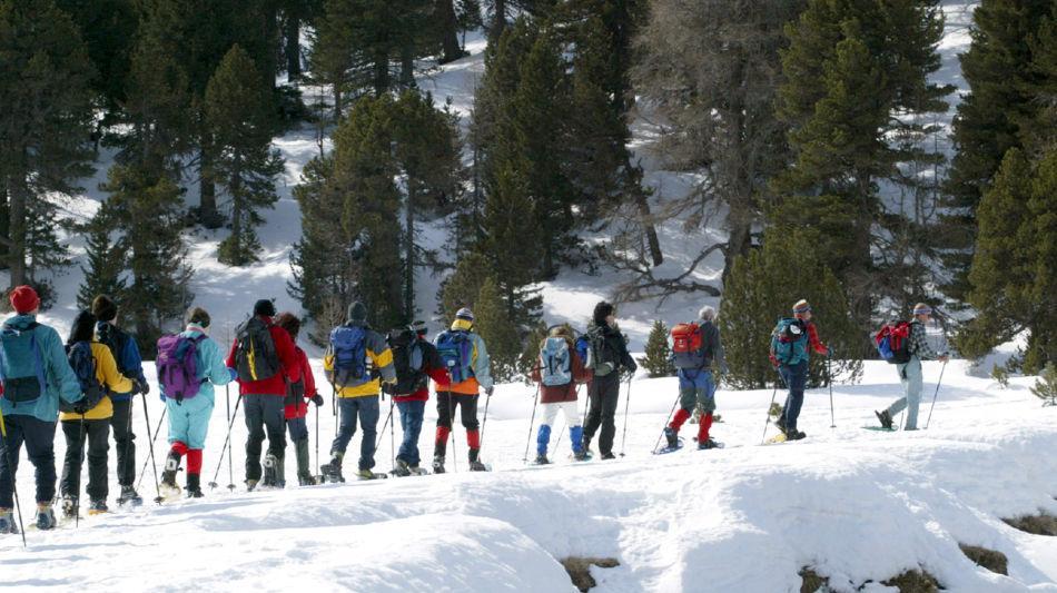 escursione-con-racchette-da-neve-9803-0.jpg