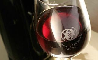 vino-terreni-alla-maggia-7382-0.jpg