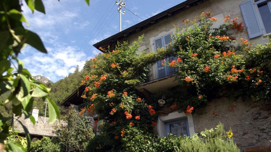 avegno-gordevio-casa-tradizionale-1459-0.jpg