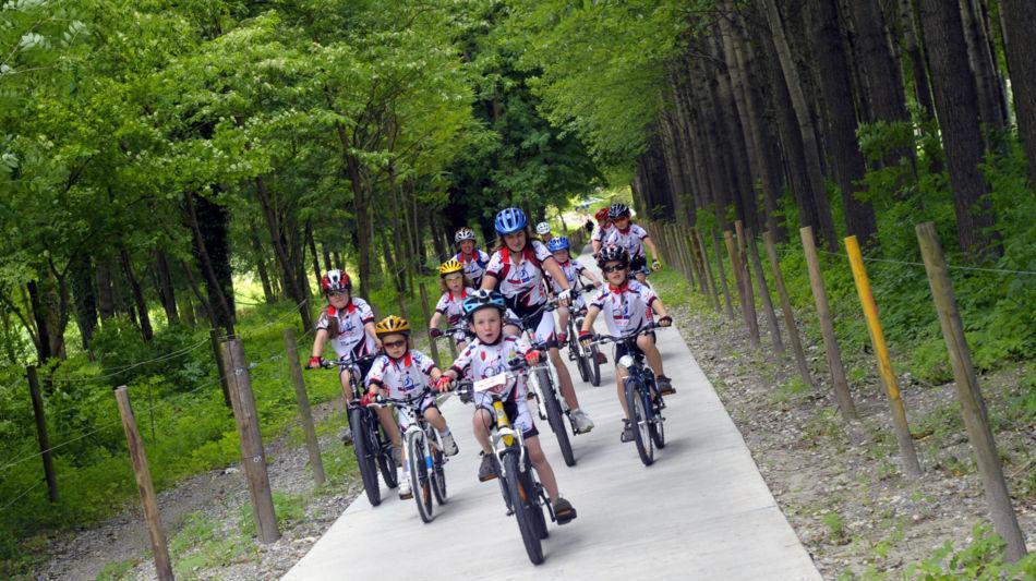 bike-7224-0.jpg