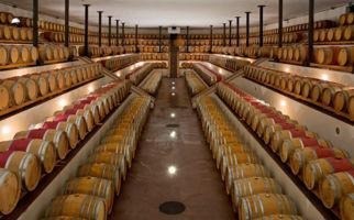 cantine-botti-di-vino-1525-0.jpg