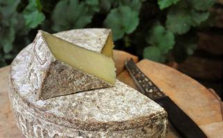 formaggio-dellalpe-6893-0.jpg