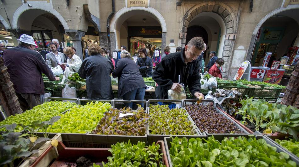 bellinzona-mercato-settimanale-1301-0.jpg