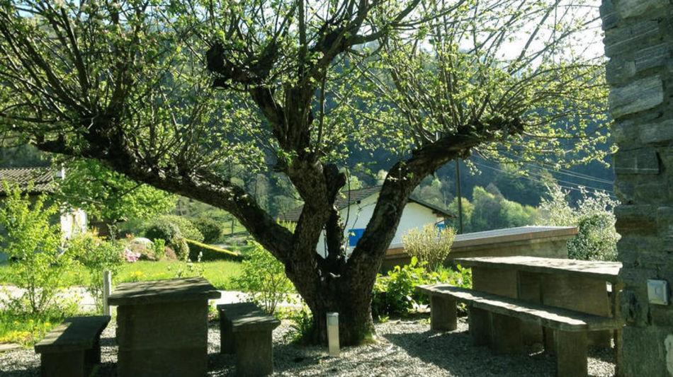 grotto-paradiso-1418-0.jpg