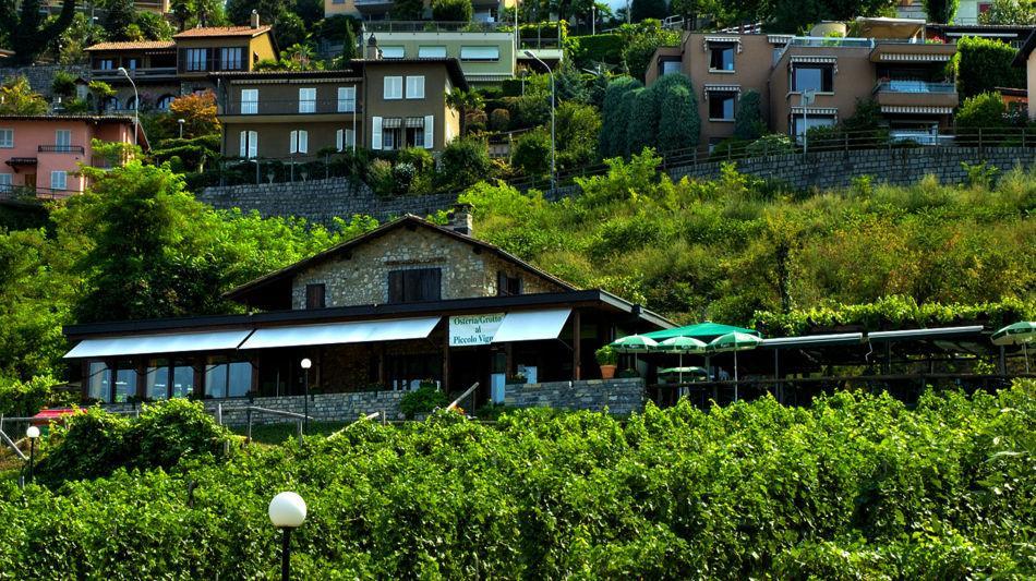 lugano-grotto-piccolo-vigneto-viganell-2204-0.jpg