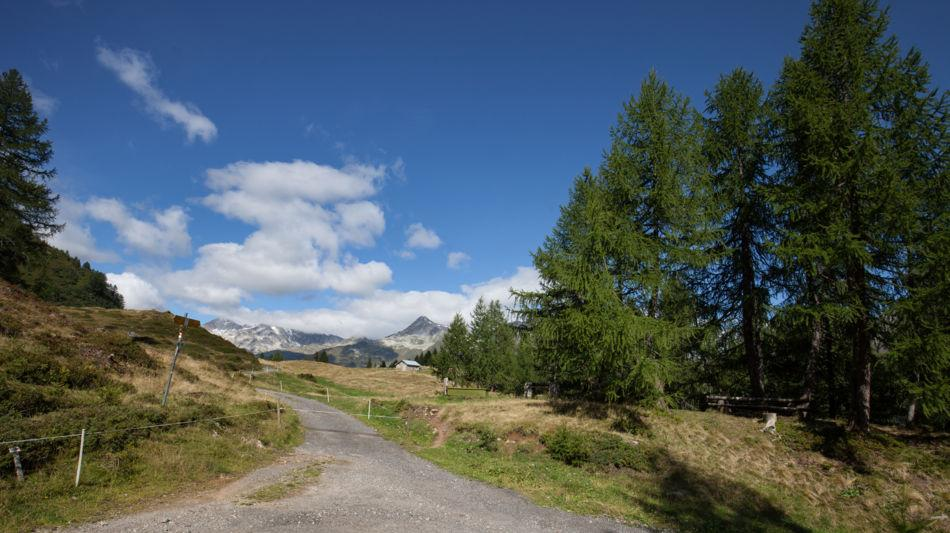 strada-degli-alpi-1596-0.jpg