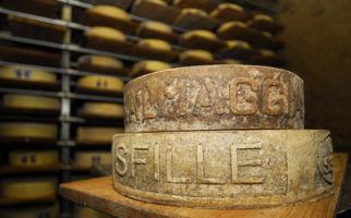 formaggio-dellalpe-6887-0.jpg