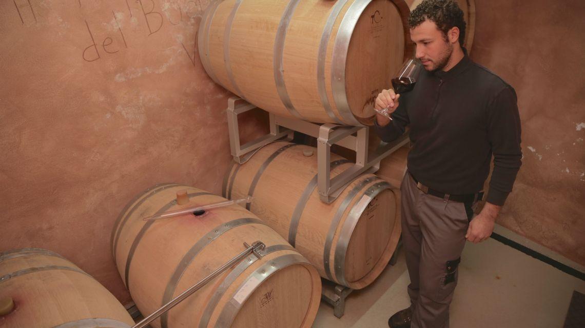 vitivinicola-fabio-zanini-1676-0.jpg