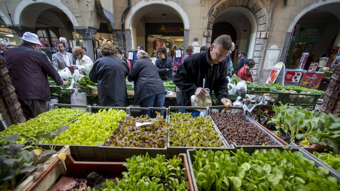 bellinzona-mercato-settimanale-1301-2.jpg
