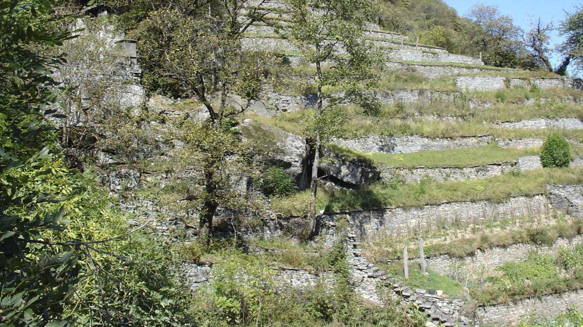 linescio-terrazzamenti-tipici-4054-0.jpg