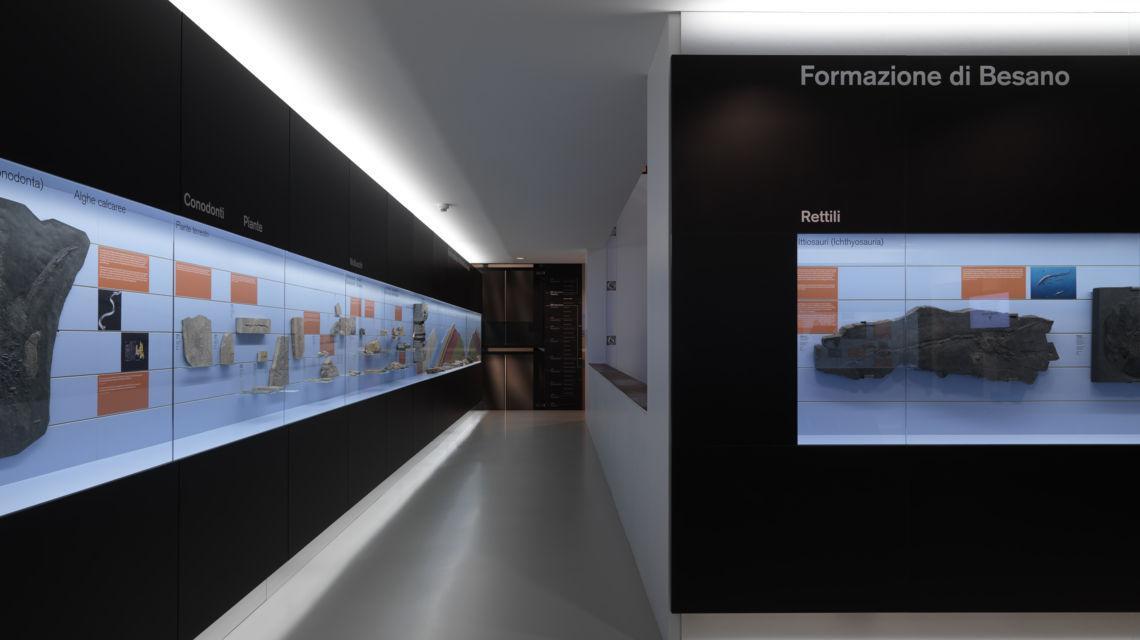 meride-museo-fossili-m-san-giorgio-6471-0.jpg