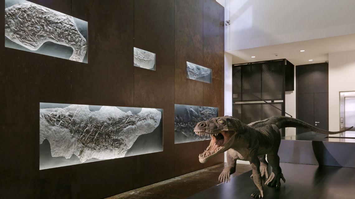 museo-dei-fossili-1748-0.jpg