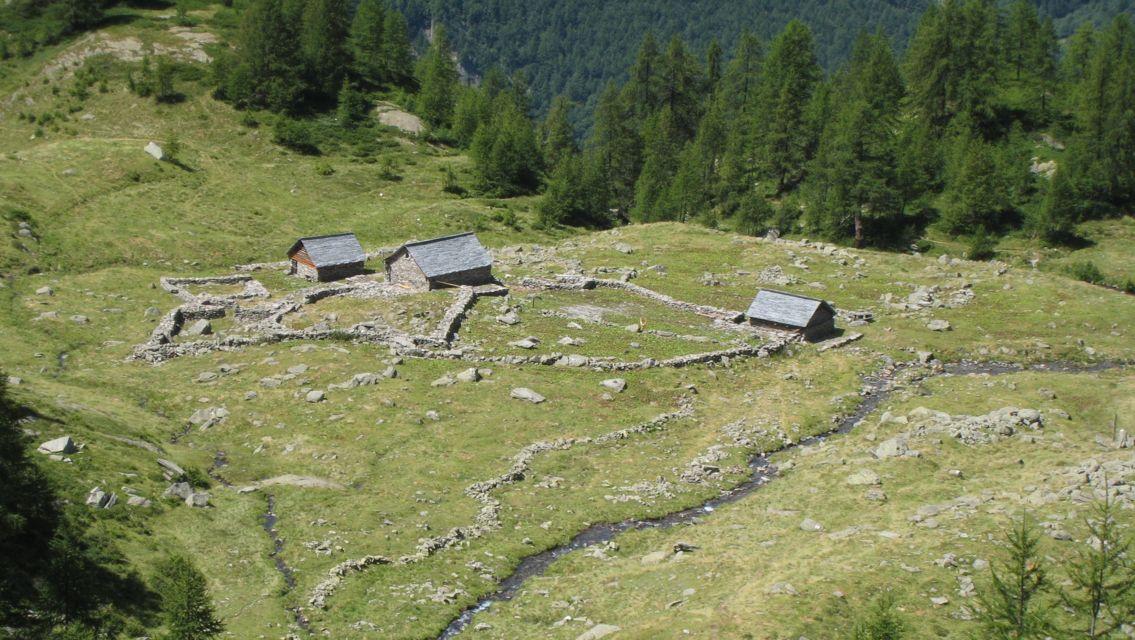 Alpe-Mognola-7878-TW-Slideshow.jpg