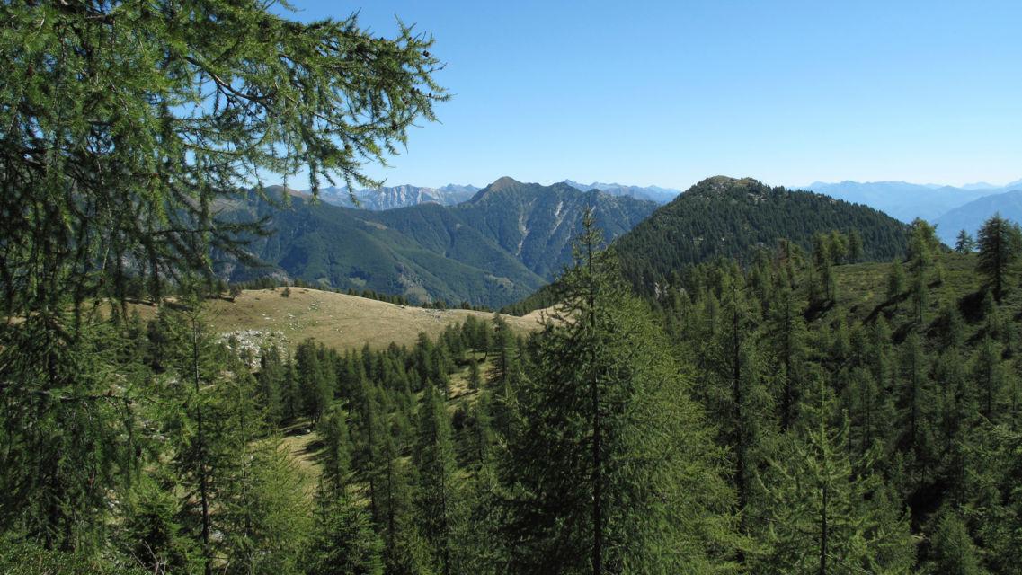 Alpe-Salei-19685-TW-Slideshow.jpg