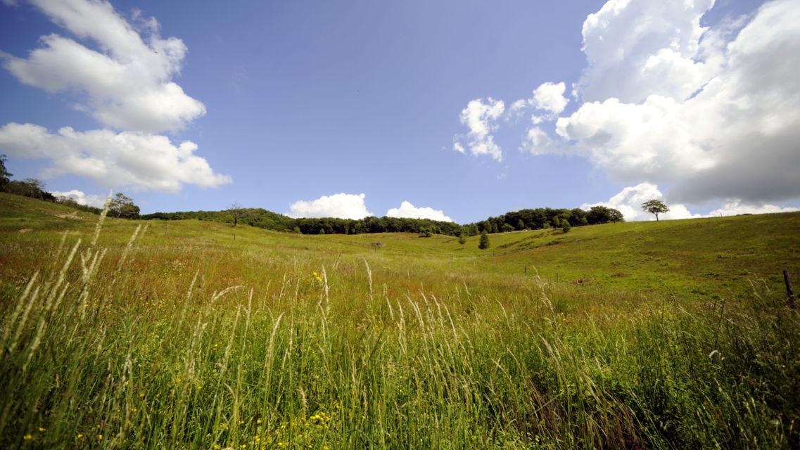Alpe-Vicania-18762-TW-Slideshow.jpg