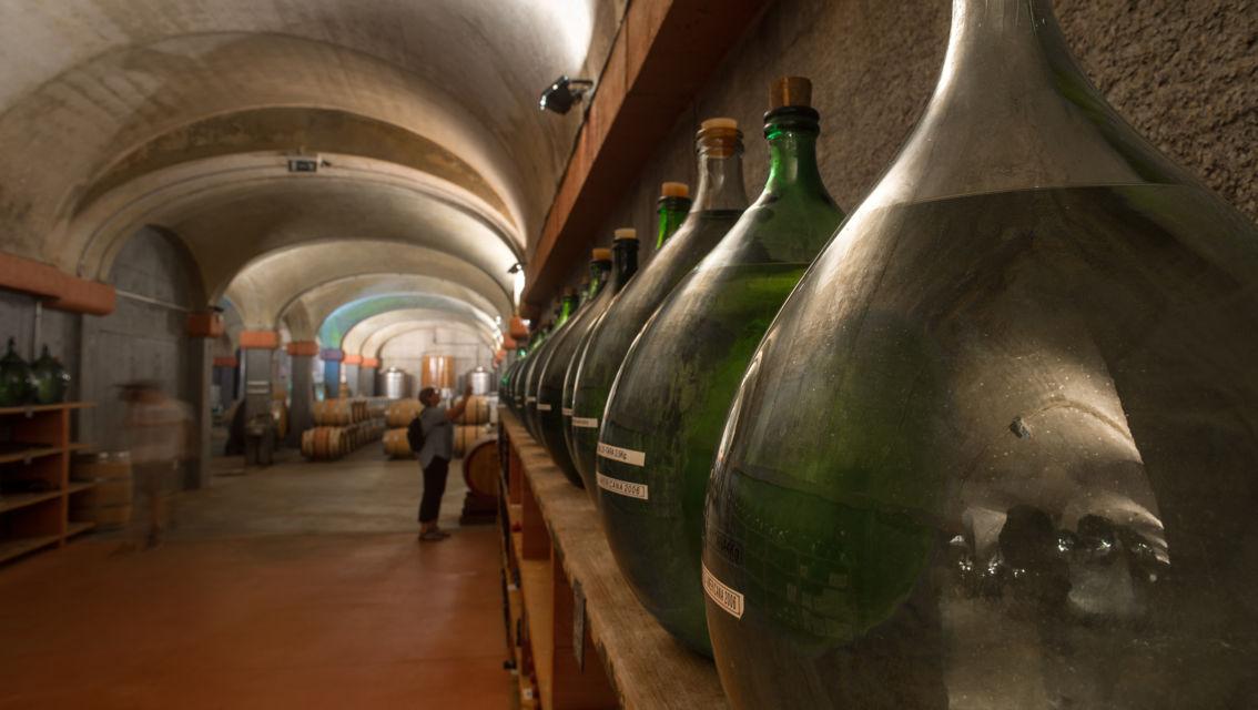 Cantina-Delea-Vini-Distillati-21520-TW-Slideshow.jpg