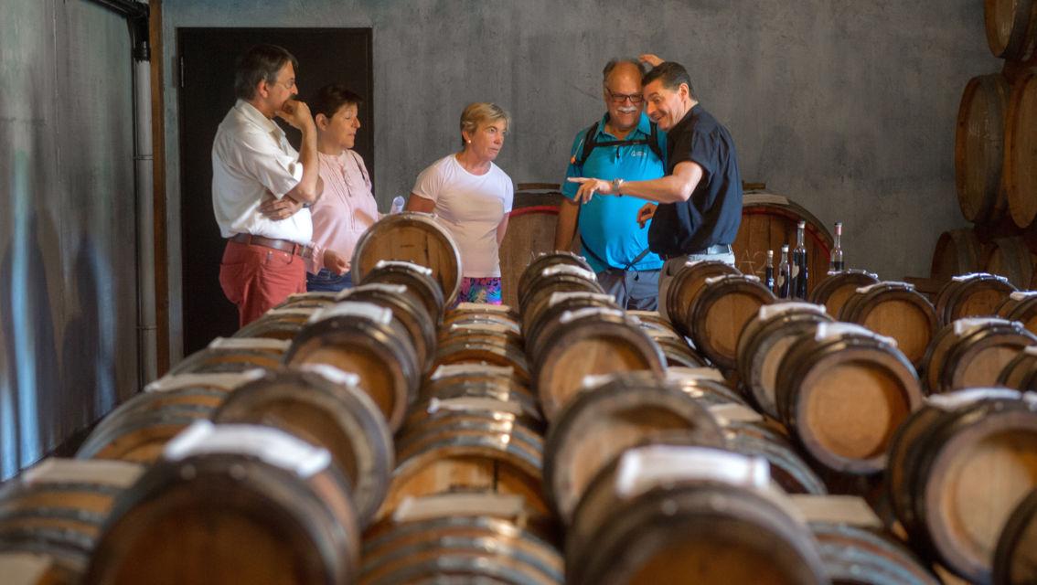 Cantina-Delea-Vini-Distillati-24256-TW-Slideshow.jpg