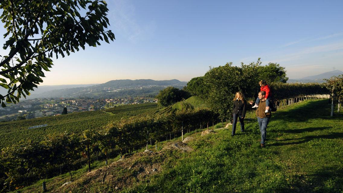 Cantina-Parravicini-22333-TW-Slideshow.jpg