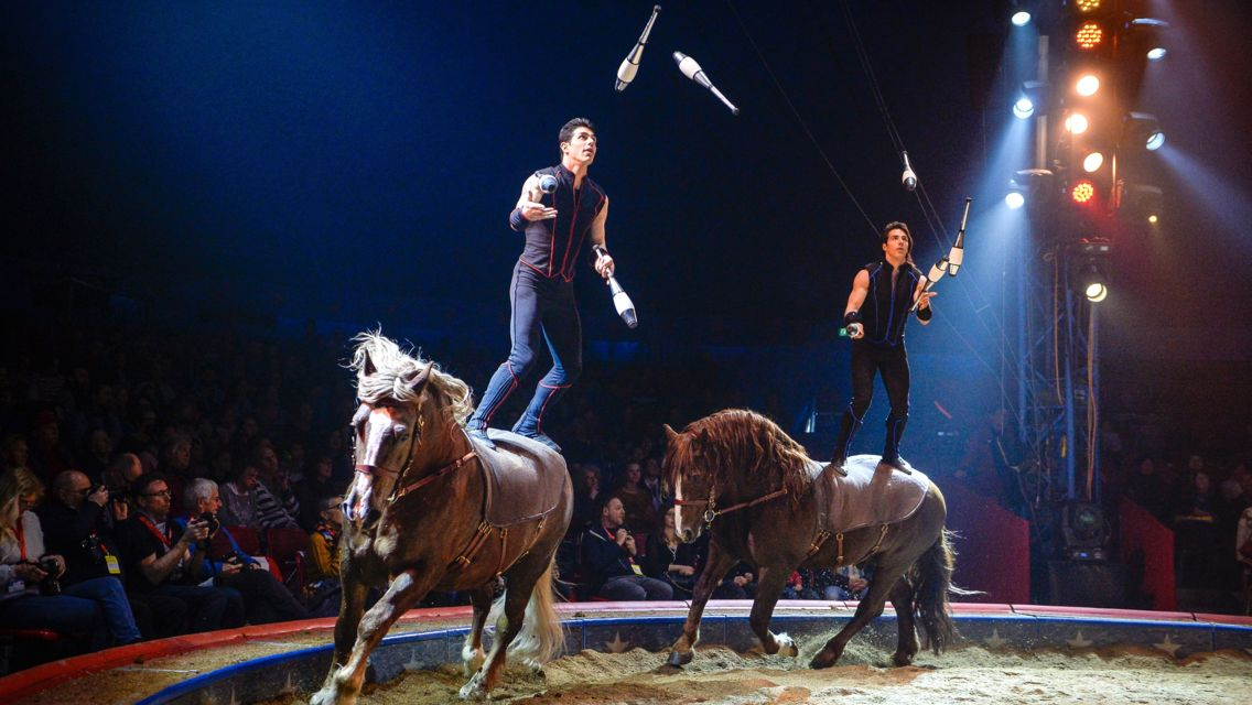 Circo-Knie-17443-TW-Slideshow.jpg