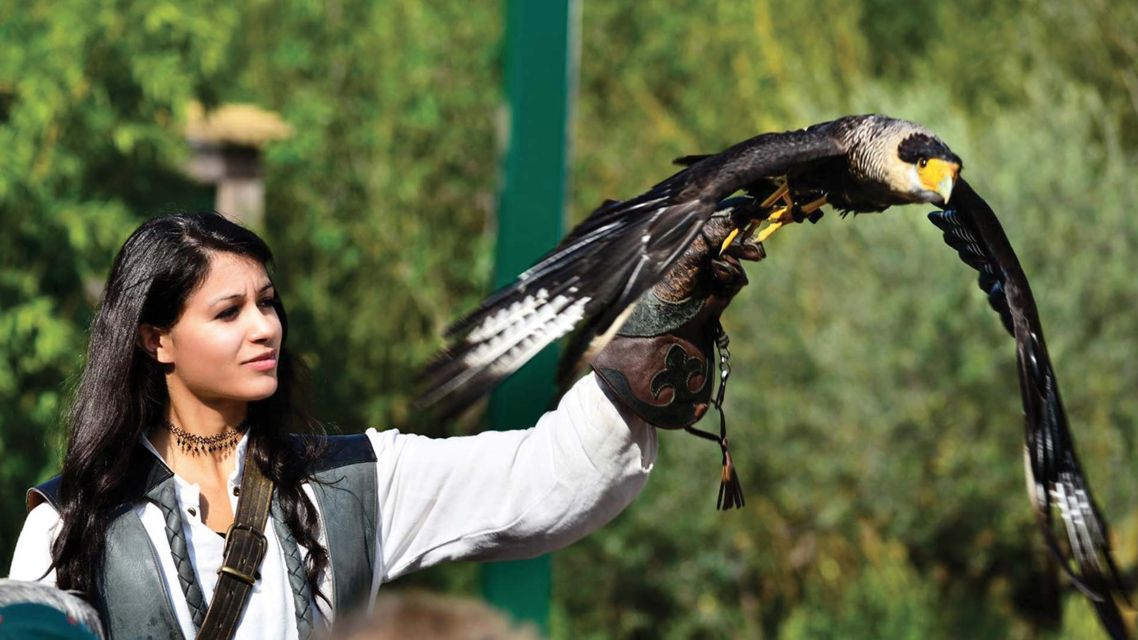 Falconeria-17970-TW-Slideshow.jpg