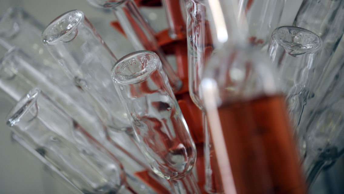 Grappa-13681-TW-Slideshow.jpg