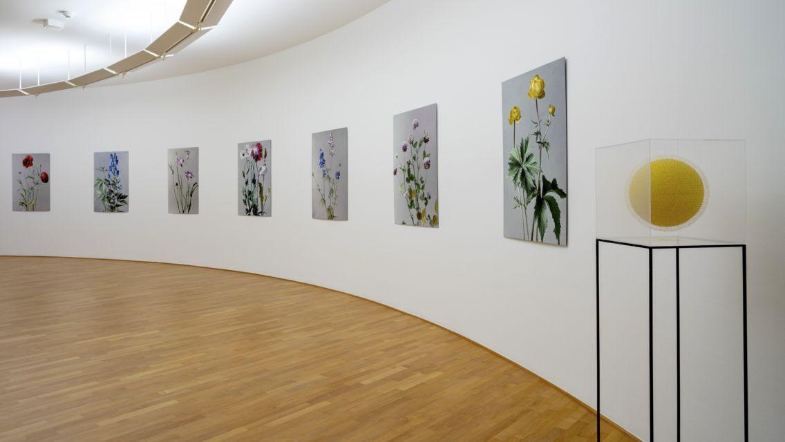 In-flore-scientia-Arte-e-botanica-24013-TW-Slideshow.jpg