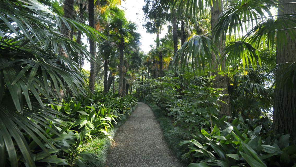 Isole-di-Brissago-Parco-Botanico-12436-TW-Slideshow.jpg
