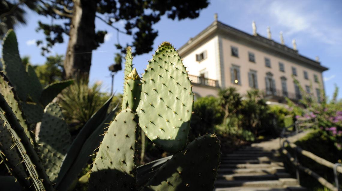 Isole-di-Brissago-ristorante-cactus-10792-TW-Slideshow.jpg