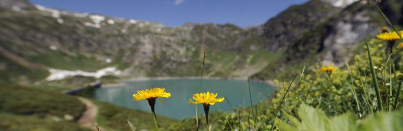 Lago-di-Robiei-19647-TW-proposta-1.jpg