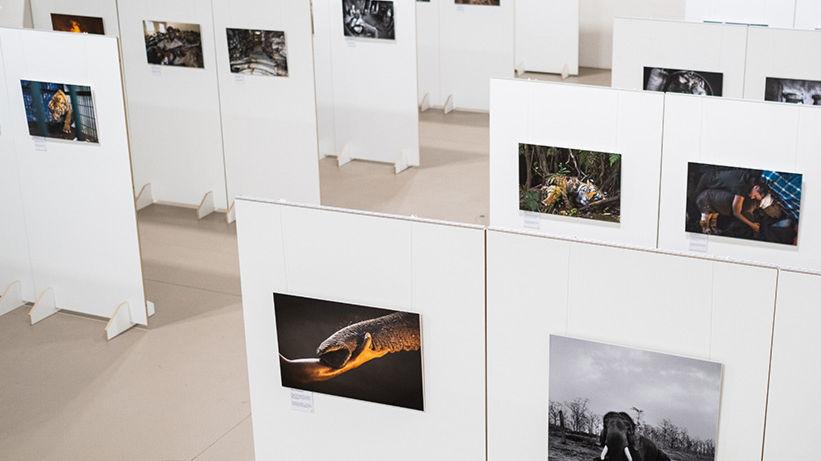 Lugano-Photo-Days-25033-TW-Slideshow.jpg
