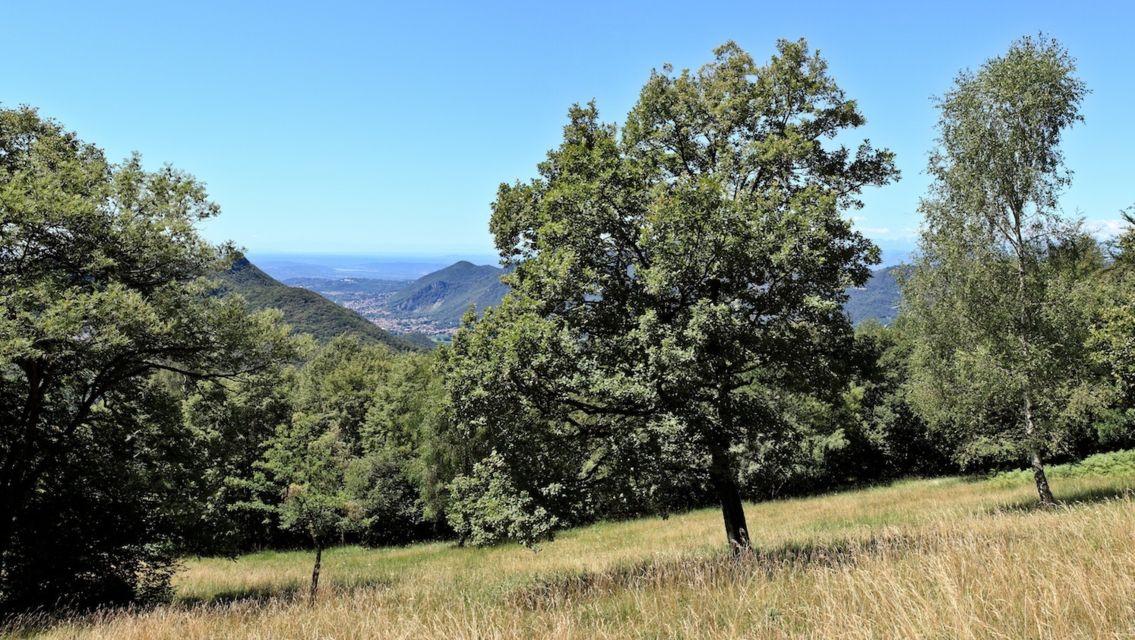Monte-San-Giorgio-13447-TW-Slideshow.jpg