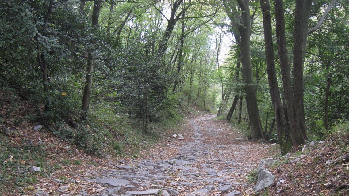 Monte-San-Giorgio-24403-TW-Slideshow.jpg