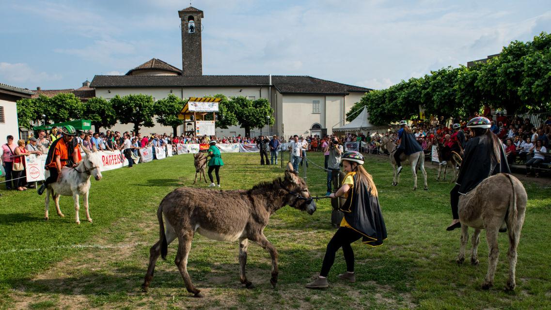 Palio-degli-asini-15261-TW-Slideshow.jpg